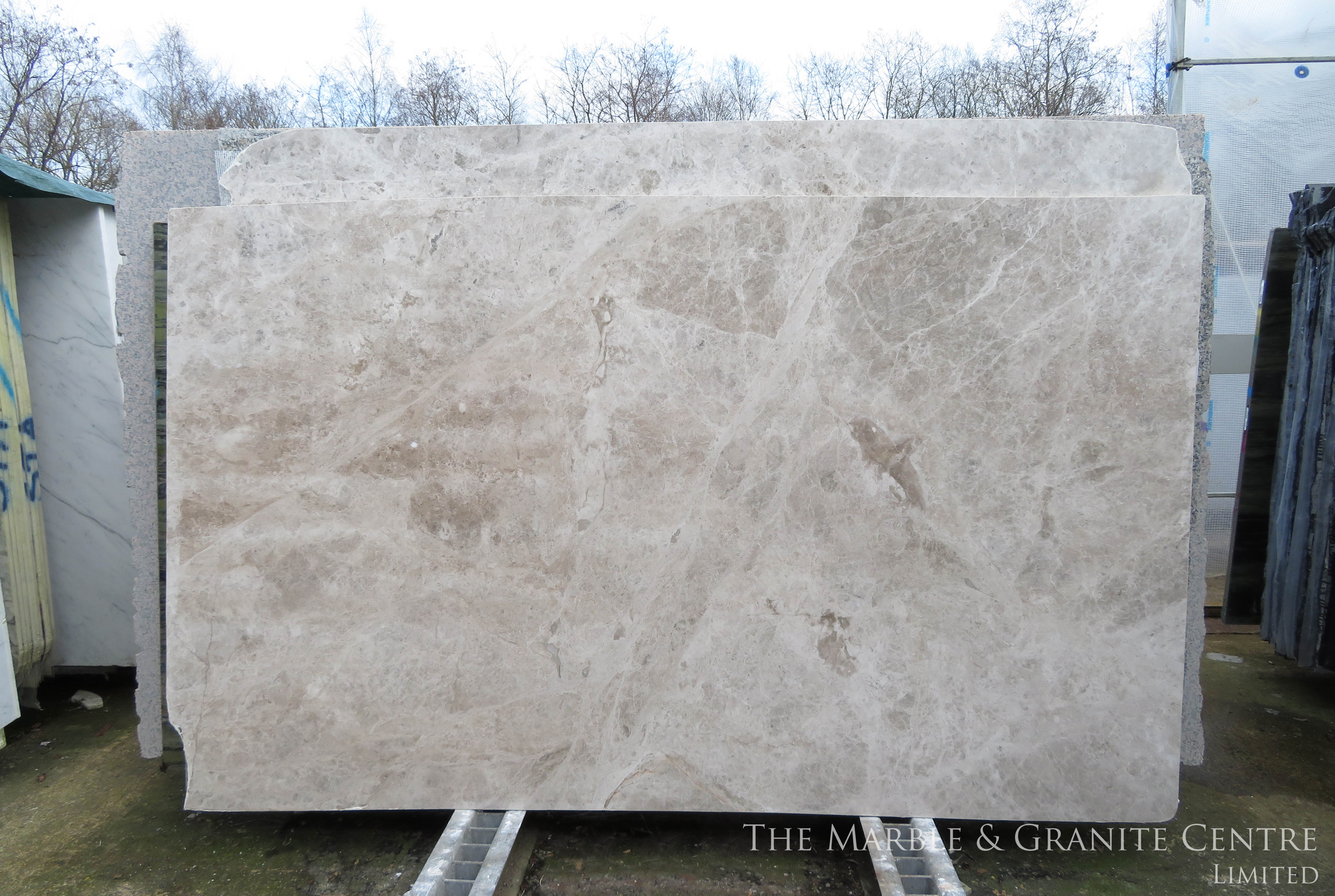 Marble Tundra Grey Polished 20 mm [1558]