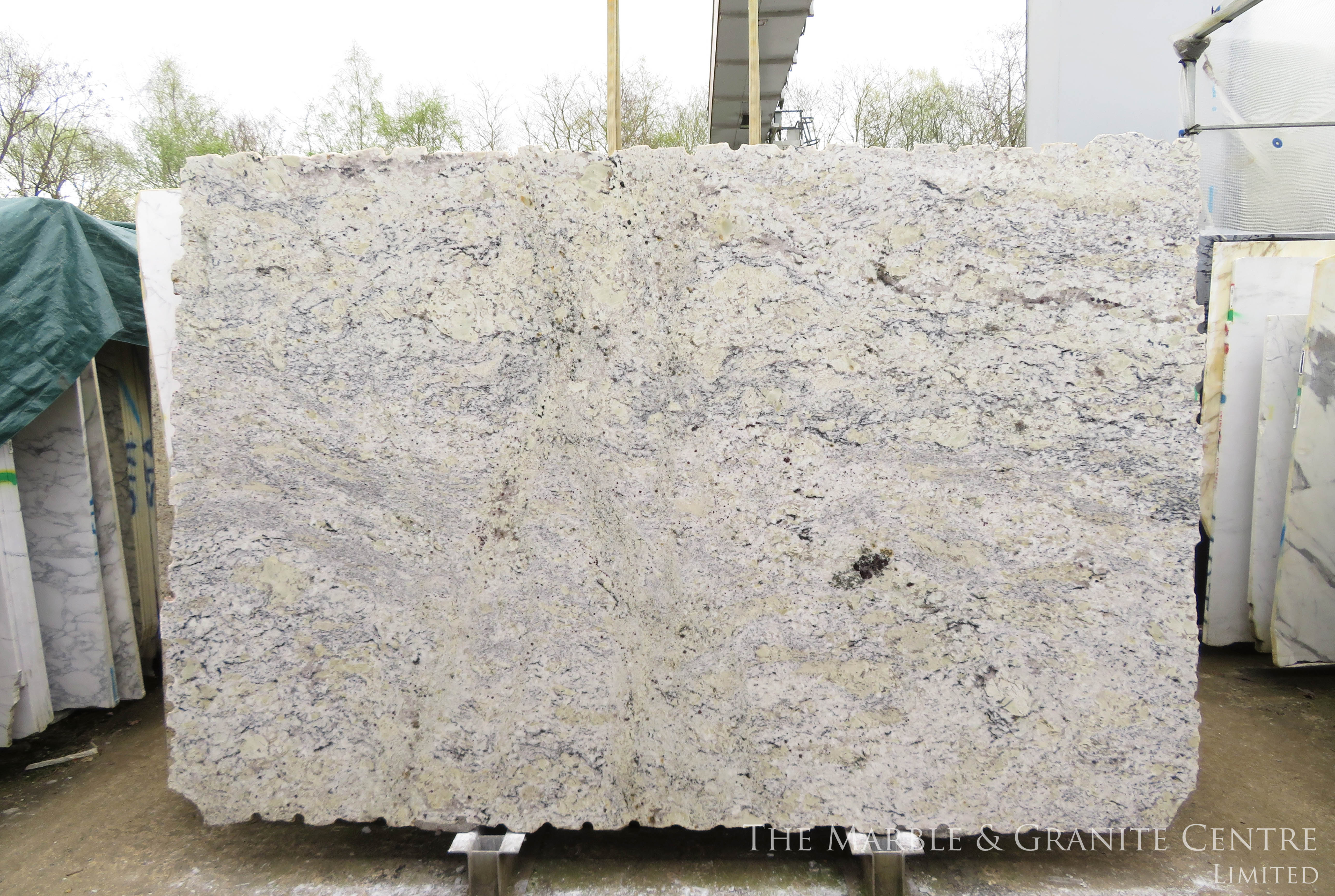 Granite Bianco Romano Polished 30 mm [C01221]